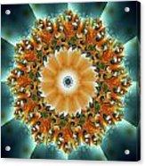 Kaleidoscope II Acrylic Print