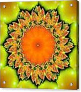 Kaleidoscope IIi Acrylic Print