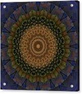 Kaleidoscope Vi Acrylic Print