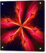 Kaliedoscope Flower 121011 Acrylic Print by David Lane
