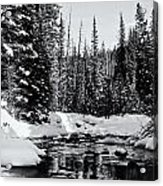 Kananaskis Creek Acrylic Print