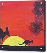Kangaroo Sunset  Acrylic Print