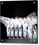 Karate Expert Acrylic Print