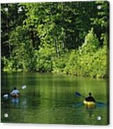 Kayakers Paddle In The Headwaters Acrylic Print