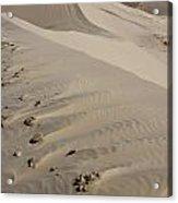Kelso Dune Tops Acrylic Print