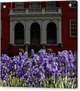Kew Garden Irises Acrylic Print