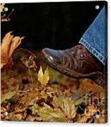 Kicking Fallen Autumn Leaves Acrylic Print by Oleksiy Maksymenko