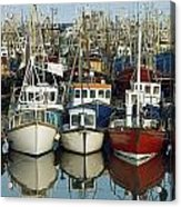 Kilkeel, Co Down, Ireland Rows Of Boats Acrylic Print