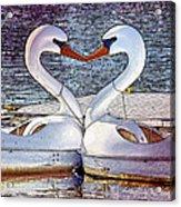 Kissing Swans Acrylic Print