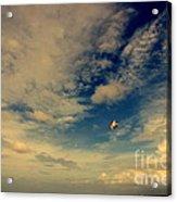 Kite At Folly Beach Near Charleston Sc Acrylic Print