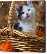 Kitten In Basket With Orange Yarn Acrylic Print