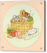 Kittens In Basket Acrylic Print