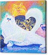 Kitties For Jenny Acrylic Print