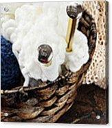 Knitting Needles Acrylic Print
