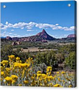 Kolob Terrace Afternoon Acrylic Print
