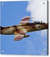 L-29 Delphin Acrylic Print