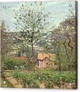 La Maison Rose Acrylic Print by Camille Pissarro