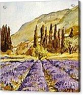 La Provence Acrylic Print