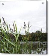 Lac Des Castors Acrylic Print