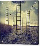 Ladders Reaching To The Sky In A Autumn Field Acrylic Print