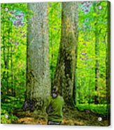 Lady In The Woods Acrylic Print
