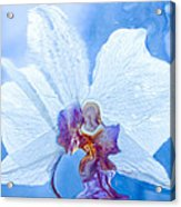 Lady Orchid The Sky Beckons Acrylic Print