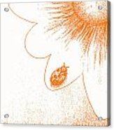 Ladybug On Daisy By Shawna Erback Acrylic Print