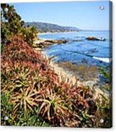 Laguna Beach Coastline Photo Acrylic Print