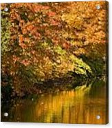 Lake And Forest In Autumn Acrylic Print
