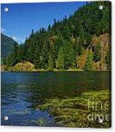 Lake Errock Acrylic Print