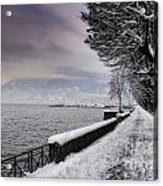Lake Front In Winter Acrylic Print