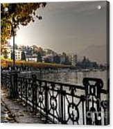 Lake Front With Autumn Trees Acrylic Print