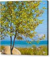 Lake Huron Seashore Acrylic Print