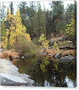 Lake In The Forest Acrylic Print by Naxart Studio