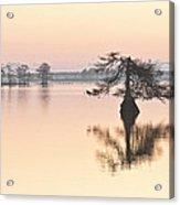 Lake Mattamuskeeet Sunrise Acrylic Print