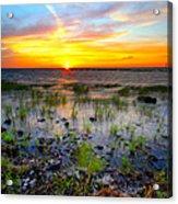 Lake Okeechobee Sunset Acrylic Print