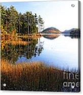 Lake Reflections In Acadia Acrylic Print