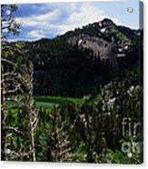 Landscape - Carson Pass 1 Acrylic Print