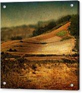 Landscape #20. Winding Hill Acrylic Print