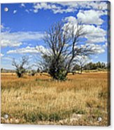 Landscape In Wy Acrylic Print