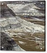 Landscape Petrified Forest Acrylic Print