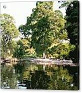 Landscape Tree Reflections Acrylic Print