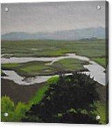 Landsend  No. 2 Acrylic Print