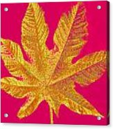 Large Leaf Photoart Acrylic Print
