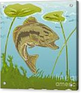 Largemouth Bass Jumping Acrylic Print by Aloysius Patrimonio