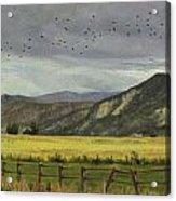 Last Harvest Acrylic Print by Victoria  Broyles