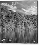 Late Afternoon At The Lake - Bw Acrylic Print