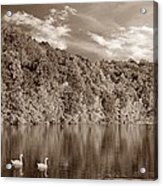 Late Afternoon At The Lake - S Acrylic Print