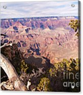 Late Afternoon At The South Rim Acrylic Print
