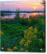 Late Summer Lake Acrylic Print